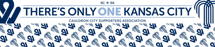 There's Only One KC Summer Scarf